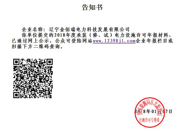 金佰瑞电力科技公司2018年检自查报告