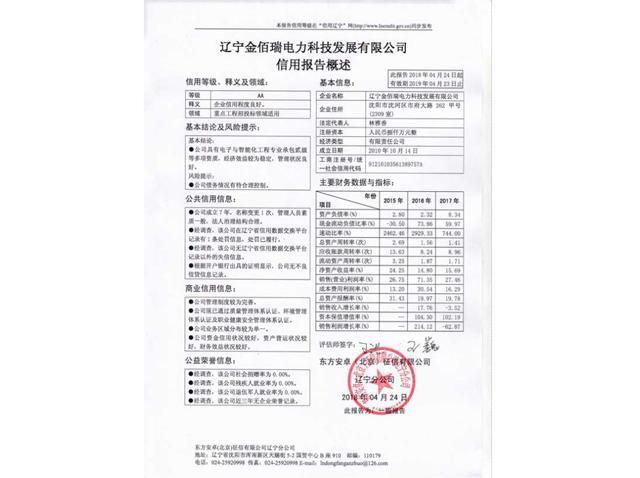 金佰瑞电力科技公司信息报告AA级证书