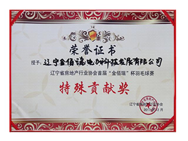 省房协羽毛球赛特殊贡献奖